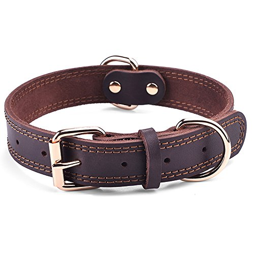 DAIHAQIKO Leather Dog Collar Genuine Leather Alloy Hardware Double D-Ring Dual Stitching 3 Best for Medium Large and Extra Large Dogs (M, Brown)