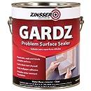 Rust-Oleum Corporation 02301 Problem Surface Sealer, 1-Gallon, Clear