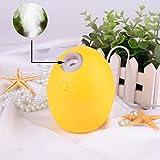 Ejotc Mini Portable 2 Color Mode Gift LED Light 160ML USB Cool...