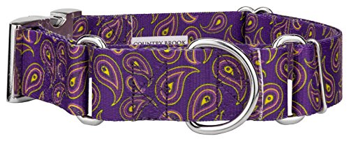 Country Brook Petz | 1 1/2 Inch Purple Paisley Martingale with Premium Buckle - Large