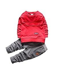 WAYNE FINKELSTEIN Boys Fall Cotton Long Sleeve 2 Pieces Clothing Sets