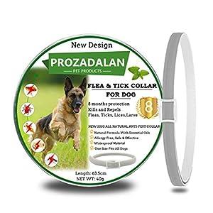 PROZADALAN Nuevo Diseño – Collares Antiparasitario para Perros, Eficaz Collar Antiparasitos Perros contra Pulgas y Garrapatas, 63cm Ajustable e Impermeable para Mascotas Pequeñas, Medianas y Grandes