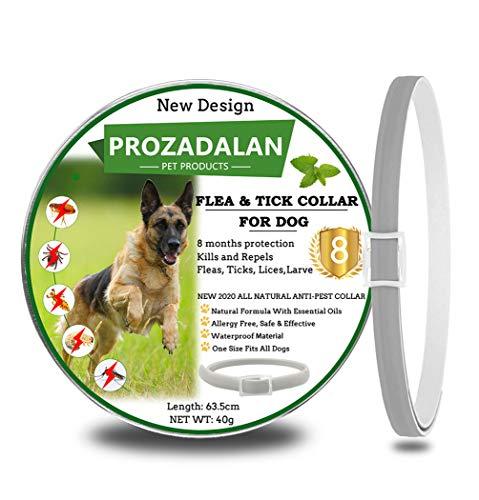 🥇 PROZADALAN Nuevo Diseño – Collares Antiparasitario para Perros