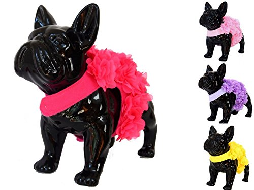 Bright Pink Small fits chest 36cm Bright Pink Small fits chest 36cm Floral Pink, Purple or Yellow Dog Harness and Leash Set for XSmall and Small Breeds Very Stylish and Cute (S, Bright Pink)