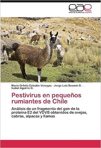 Pestivirus En Pequenos Rumiantes de Chile: Amazon.es: Celed N ...