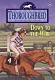 Down to the Wire (Thoroughbred, No. 38)