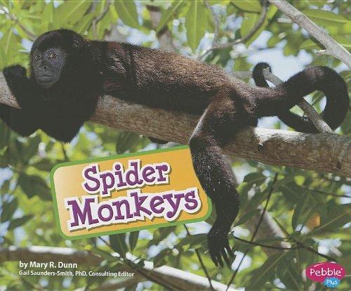 Download Spider Monkeys ebook