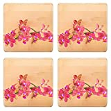 Luxlady Square Coasters Non-Slip Natural Rubber Desk Coasters spa concept red orchid on the bamboo IMAGE ID 25203500