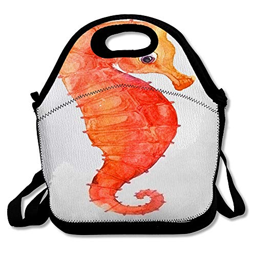 Insulated Lunch Bag Drawn Color Watercolor Seahorse Hand Funny Seahorses Underwater Paint Baby Design Marine Reusable Lunch Tote for Work and School -
