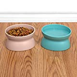 Kitty City Raised Cat Food Bowl, Stress Free Pet