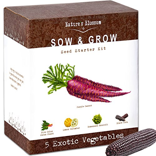 Exotic Vegetables Growing Kit - 5 Unique Plants to Grow From Seed: Purple Carrots, Blue Corn, Yellow Cucumber, Rainbow Chard & Broccoli. Garden Gift for Children - Fun Gardening Set For Boys & Girls -