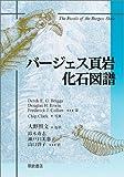 バージェス頁岩 化石図譜