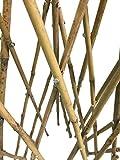 """Natural Bamboo Poles Teepee, 60"""" H, Natural"""