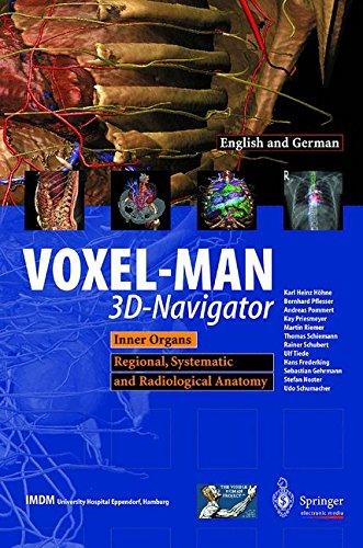 Voxel Man 3D Navigator  Part 2  Inner Organs