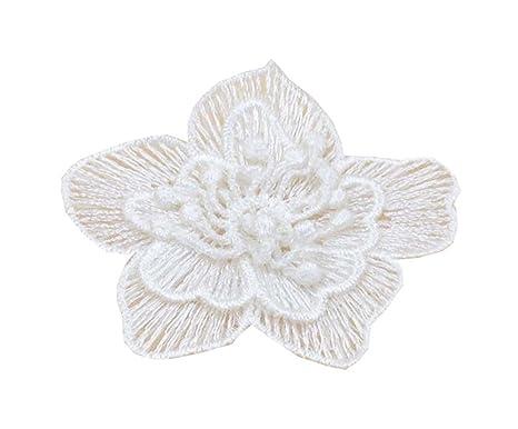 Alien Storehouse CCoser Applique bordado del cordón de la flor para el accesorio del paño Juego