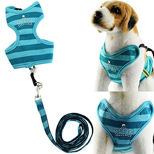 BroBear-Pet-Stripes-Vest-Mesh-Harness-and-Leash-Set-with-Rhinestones-for-Cats-Small-Dogs