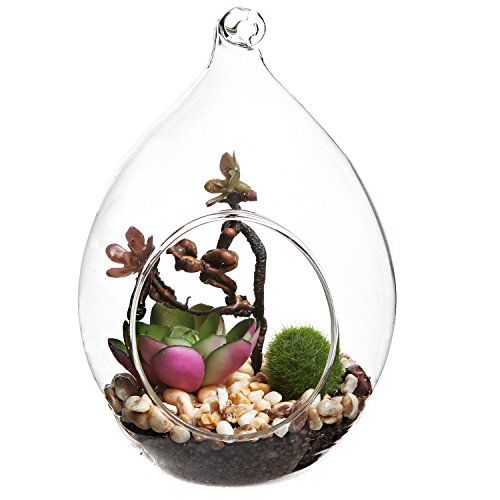 Decorative Artificial Succulent Tabletop Terrarium
