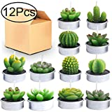 Outee Cactus Tealight Candles 12 Pack Handmade Delicate Succulent Cactus Candles Flameless Aromatherapy 12 Designs for Birthday Party Wedding Spa Home Decoration