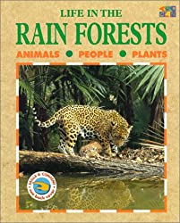 Life in the Rainforests (Life in the...)