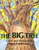 The Big Tree, Bruce Hiscock, 1563978105