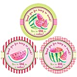 Watermelon Thank You Sticker Labels - Girl Children Birthday Baby Shower Party Supplies - Set of 30