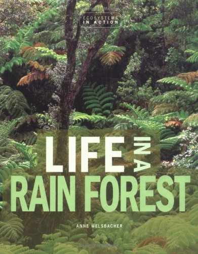 Life in a Rain Forest (Ecosystems in Action) pdf