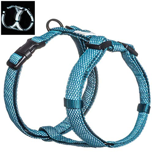 Embark Illuminate Reflective Dog Harness - Easy On and Off, No Choke Dog Walking Harness - Be Seen from All Angles - Dog Harness Large Breeds (Small, Blue)