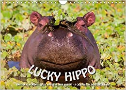 Emotional Moments: Lucky Hippo / UK-Version 2017: Hippos in Their Natural Habitat - A Calendar of Ingo Gerlach Gdt (Calvendo Animals)