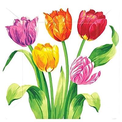 "Amscan AMI 591196 Bright Tulips Square Plate, 10"", Multicolor: Kitchen & Dining"