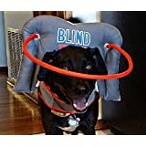 Muffin's Halo Guide for Blind Dogs - Blind Dog