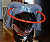 Muffin's Halo Guide for Blind Dogs, Large - Blind Dog