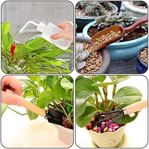 Leful nuoshen 9 PZ succulenta trapianto giardino insieme di strumenti mini giardino