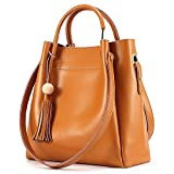 Kattee Women's Genuine Leather Hobo Tote Shoulder Bag with Tassel (Brown)