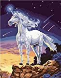 Dorara DIY Oil Painting for Adults Kids Paint By Number Kit Digital Oil Painting Unicorn 16x20 Inches