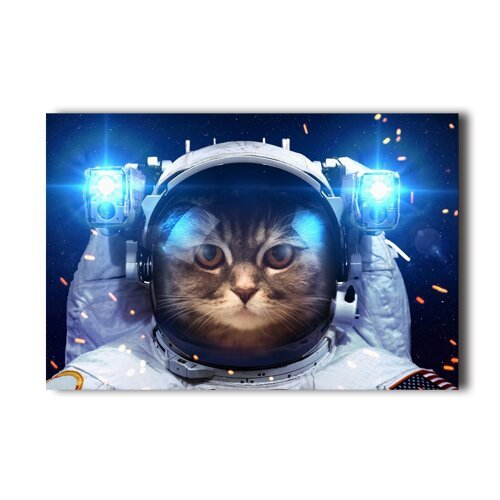 [Cat In Space Funny Astrouant Design Poster 20x30 Inch Wall Sticker] (Human Wolf Costume)