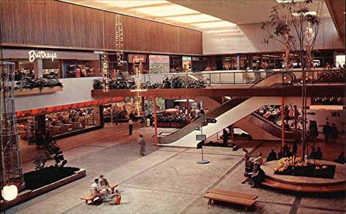 Garden Court - Southdale Shopping Center Minneapolis, Minnesota Original Vintage - Southdale Minneapolis Center