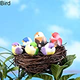dezirZJjx Mini Micro Landscape,Cute DIY Miniature Fairy Garden Little Bird Egg Nest Micro Landscape Decoration - Bird