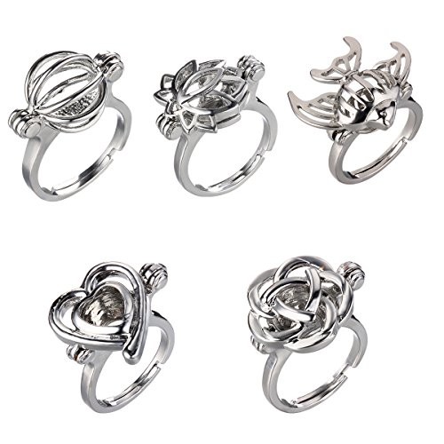 (HENGSHENG 5 PCS Mixed Shape Hollow Locket Rings Mountings Cage Charms Rings for Women (5 PCS))