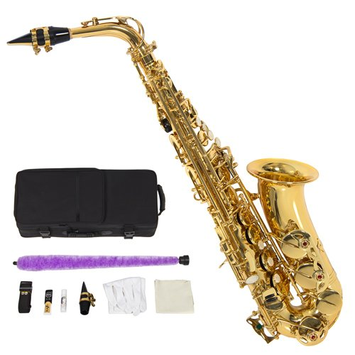 Professional Alto Saxophone Other Accessories