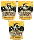 Sun Seed Vitakraft Vita Prima Sun Salad Treat for
