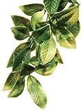 Exo Terra Plastic Terrarium Plant, Large, Mandarin
