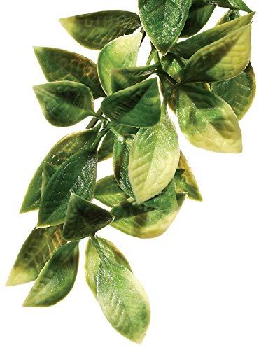 (Exo Terra Plastic Terrarium Plant, Large, Mandarin)
