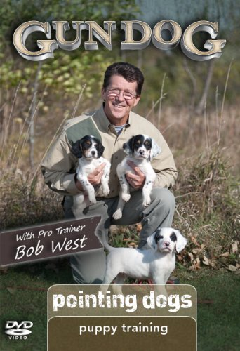 Gun Dog Puppy Training: Pointing Dogs DVD