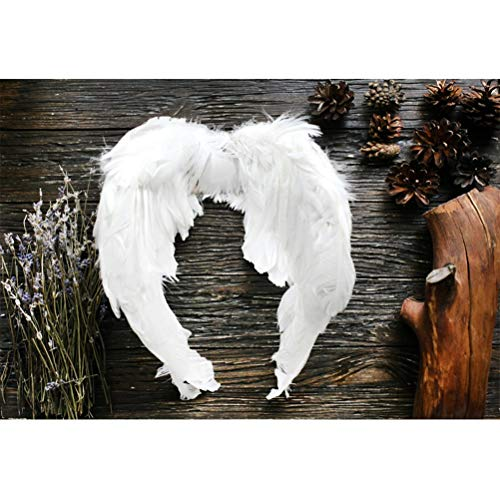 (Laeacco Vinyl 10x7ft Valentine's Day Backdrops Cupid Feather Wings Dry Bouquet Tree Trunk Pine Cones Grunge Rustic Plank Photography Background Lovers Couple Artistic Photo Shooting )