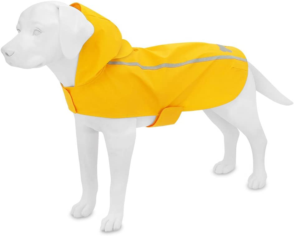 Voyager Dog by Best Pet Supplies