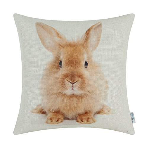 (CaliTime Canvas Throw Pillow Cover Shell for Couch Sofa Home Decoration Animals Theme Print 18 X 18 Inches Rabbit)