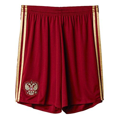 adidas Herren Shorts RFU H SHO, Collegiate Burgundy/Dark Football Gold, L, 4056559280826