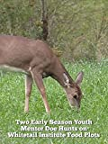 Two Early Season Youth Mentor Doe Hunts on Whitetail Institute Food Plots