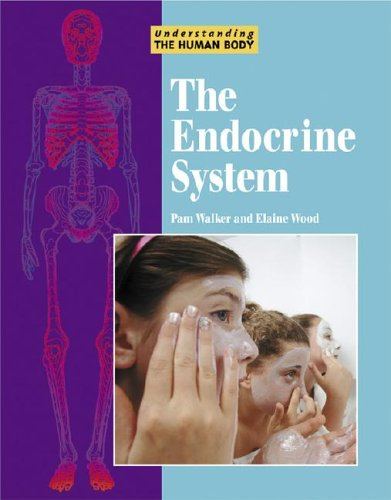 Read Online Understanding the Human Body - The Endocrine System PDF