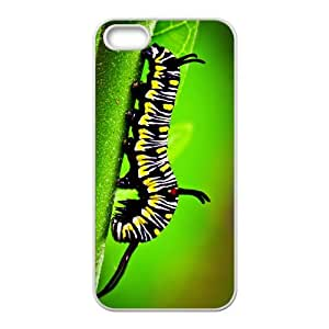 Colorful Caterpillar Hight Quality Plastic Case for Iphone 5s